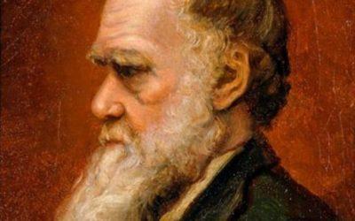 Charles Darwin en evolutie